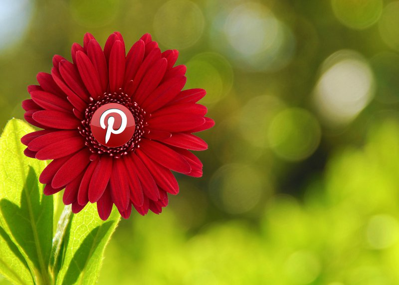 Top Social Media Sites for Business: Pinterest